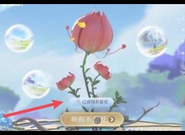 王者荣耀祈愿花活动怎么做 祈愿花使用方法详解
